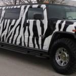 hummer limousine zebrato